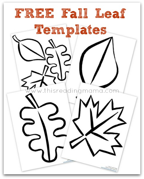 Natural Fall Leaf Collages {FREE Printable Included} - leaf template