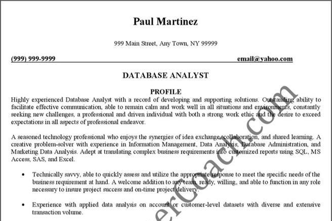 9+ Marketing Analyst Resume Template Free Download