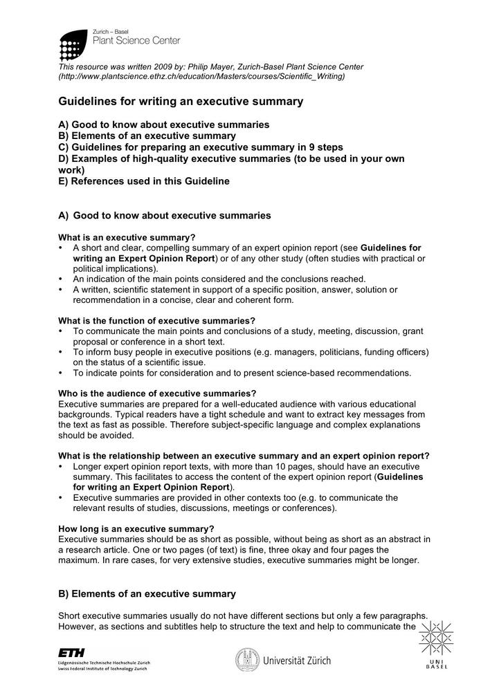 Download Executive Summary Template Structural Example PDF for Free