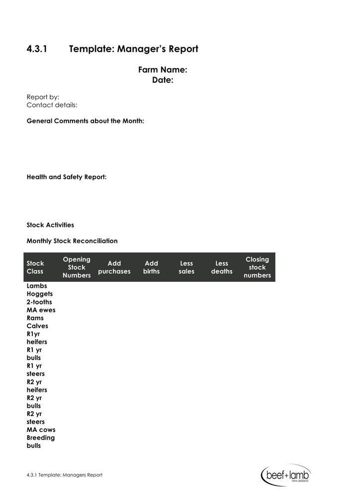 Download Monthly Management Report Template Free Doc Format for Free