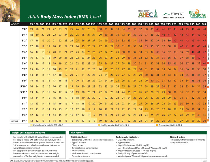 Download BMI Chart for Free - TidyTemplates