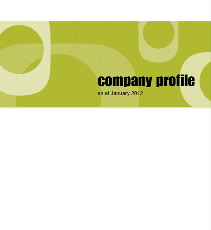 3+ Company Profile Sample Free Download