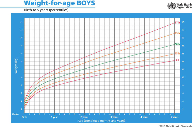 Download Height Weight Chart Templates for Boy for Free - TidyTemplates