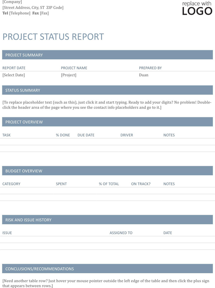 6+ Project Status Report Template Free Download