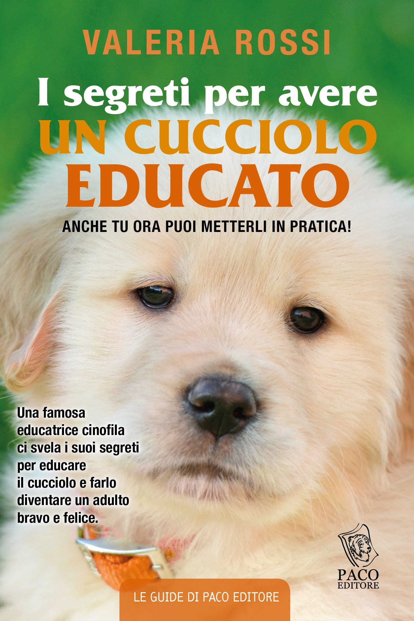 Libro Golden Retriever Quotil Cucciolo Educato Quot Valeria Rossi Per Paco Editore Ti