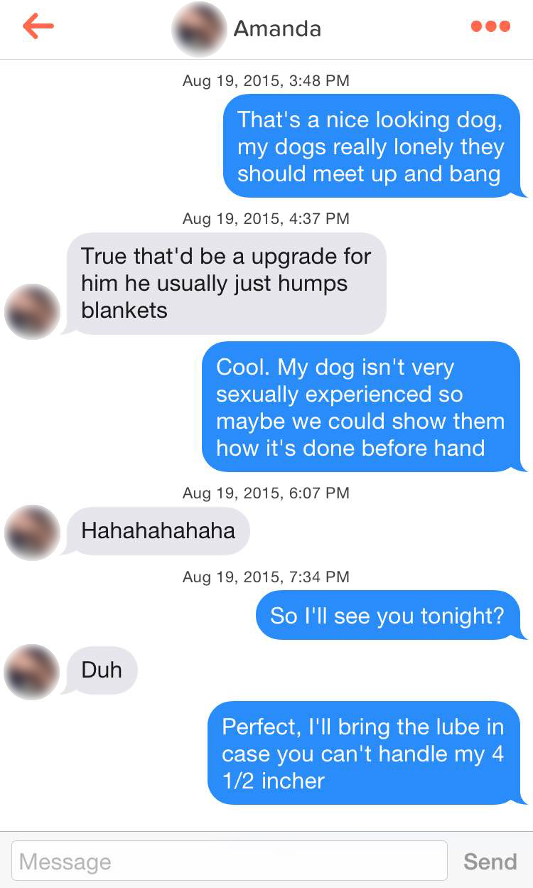Glomorous Teaching Your Dog Doggy Style By Making Him Watch You Plow A Total Frat Move Ridiculous Tinder Pickup Part Dog Pick Up Lines Meme Dog Pick Up Lines Tinder bark post Dog Pick Up Lines
