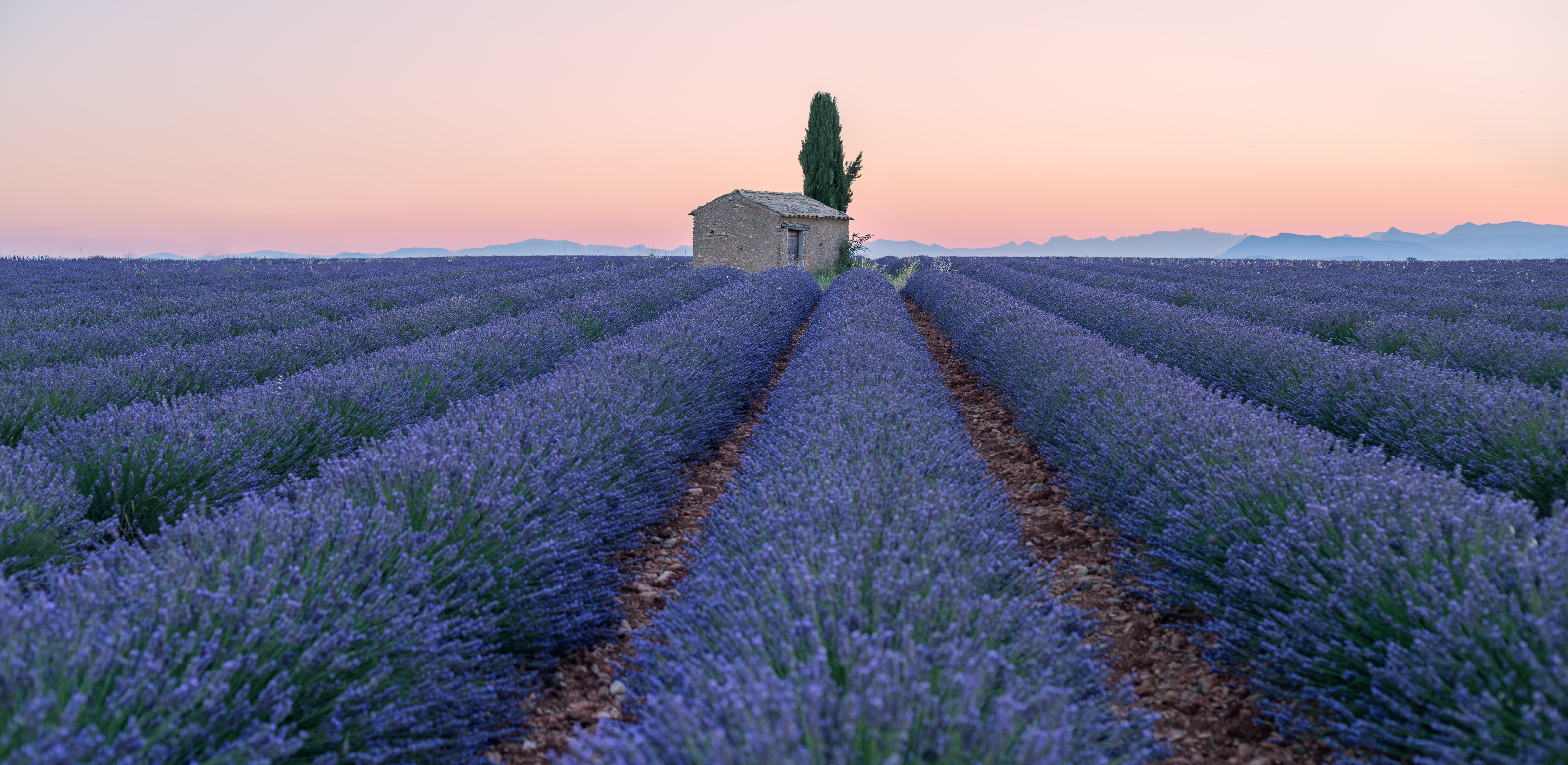 Meteo France Avignon 10 Best Provence Tours Vacation Packages 2019 2020 Tourradar