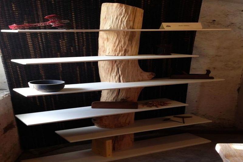 Tree Trunk Bookcases Antoniazzi