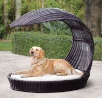 Luxury Outdoor Canine Furniture : dog lounge