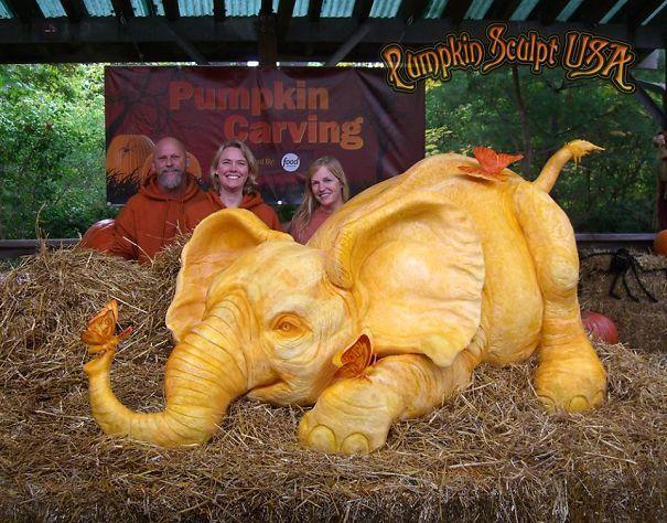 Skeleton Pattern Wallpaper Cute Elephantine Pumpkin Carvings Giant Pumpkin Carving