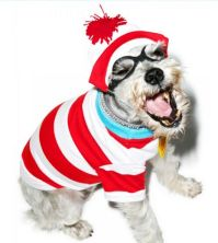 Hide-and-Seek Pooch Costumes : where's waldo