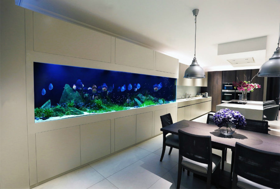 Aquarium Island Kitchen Amazing Built-in Aquariums In Interior Design