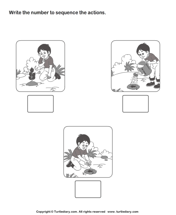 sequencing events worksheets for kindergarten Brandonbriceus – Sequence of Events Worksheet
