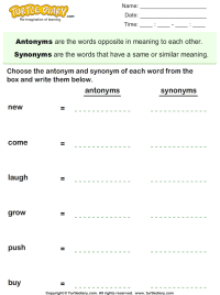 Choose the Antonym and Synonym of Words Worksheet - Turtle ...