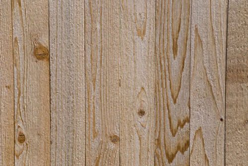 More Than 350 Free and Premium Wood Textures