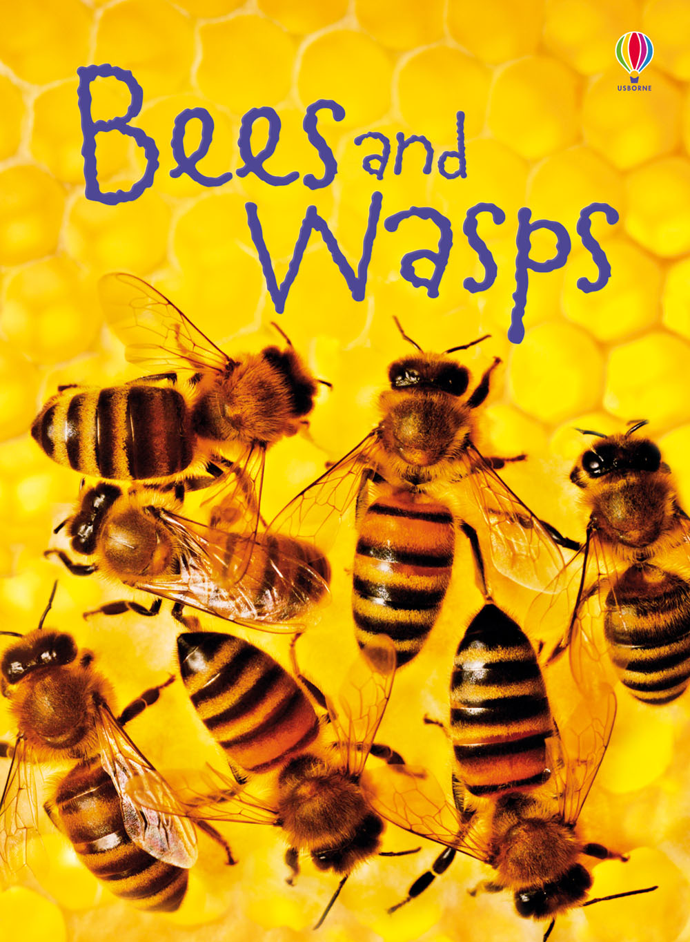 "Novel Books For Beginners ""bees And Wasps"" At Usborne Children's Books"
