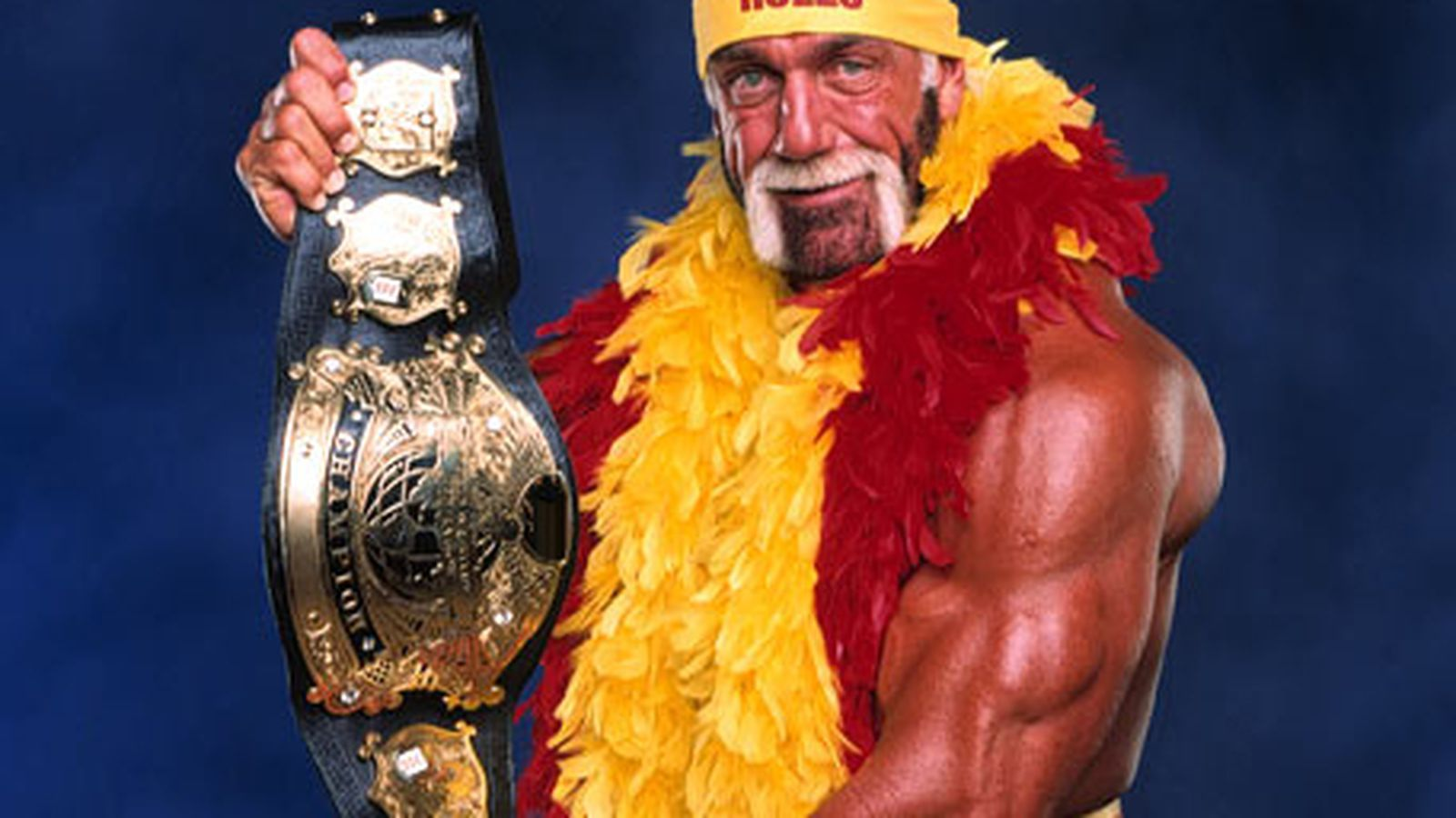 Wwe Hulk Hogan Poll Results Hulk Hogan Is The Most Popular Pro Wrestler