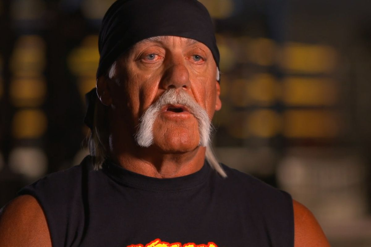 Hogan Hulk Hulk Hogan Is Not Sure Wwe Will Ever Bring Him Back