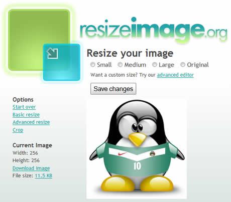 redimensionar fotos Redimensionar imagenes en ResizeImage.org