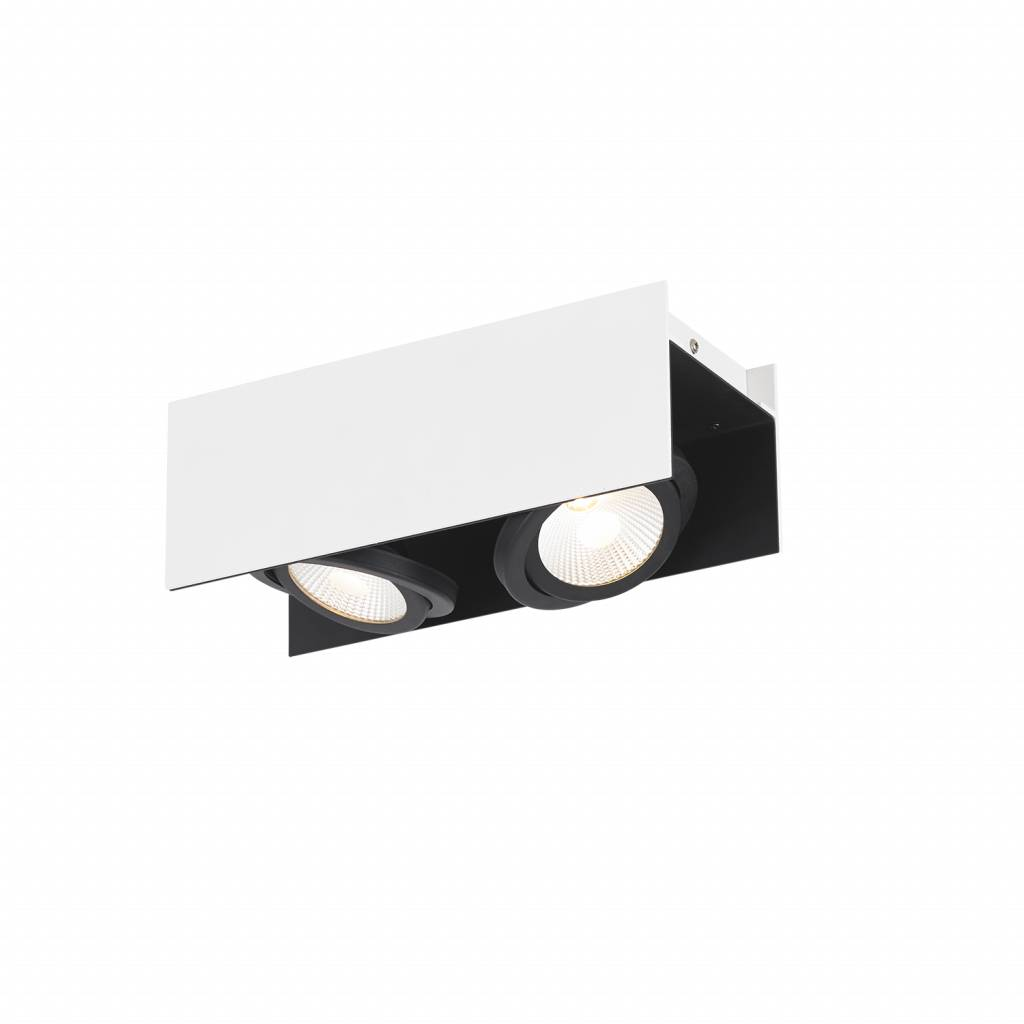 Eglo Verlichting Made Led Wall Ceiling Spot Vidago 2 Light 39316
