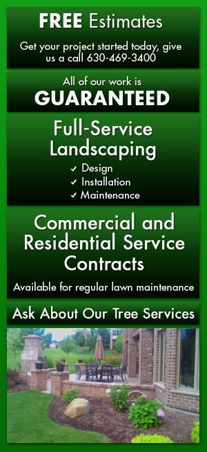 Landscaping and Lawn Services Glen Ellyn, IL - Green Planet Inc