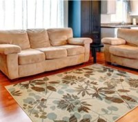 Star Carpet Cleaning | Furniture Cleaning | Lafayette, IN
