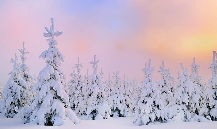 Download free Windows 10 Winter Themes for this Christmas - christmas themes images