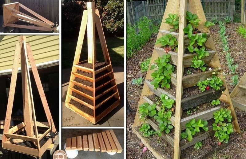 Vibrant Vertical Garden Pyramid Planter - Guide And Instructions