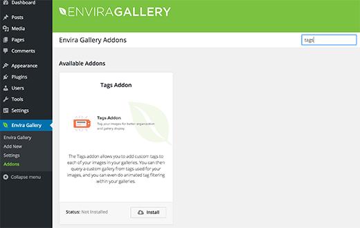 Envira Gallery tags addon