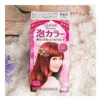 KAO LIESE PRETTIA Bubble Hair Dye Pink Berry 1set ...