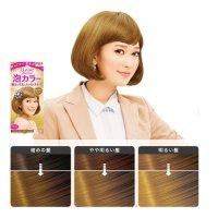 KAO LIESE PRETTIA Bubble Hair Dye #Milk Tea Brown 1Set ...