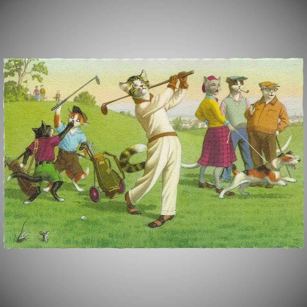 Mainzer Dressed Cats Postcard On The Golf Course