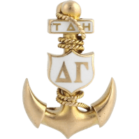 Vintage Rare Delta Gamma Badge Pin - 14k Yellow Gold ...