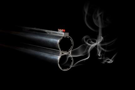 Image result for smoking guns