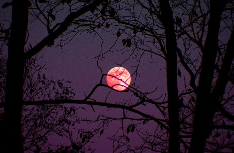 Kentucky Fall Wallpaper 2017 Pink Moon To Rise In The Sky This Week