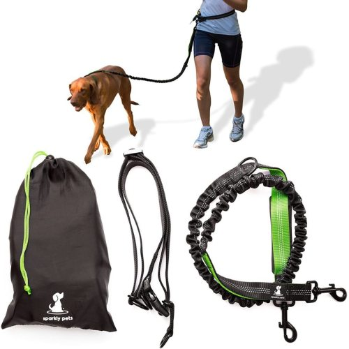 Medium Of Hands Free Dog Leash