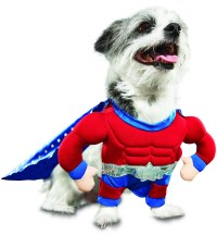 Petco's 'Bootique' Line of Dog Halloween Products Is