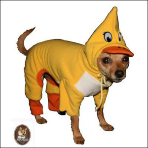 10 Best Wild Game Halloween Costumes For Dogs