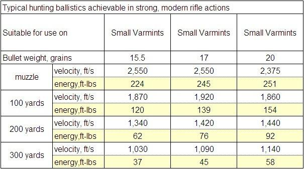 Taking a Closer Look at the 17 HMR Rifle Cartridge
