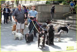 Small Of Daniel Radcliffe Dogs