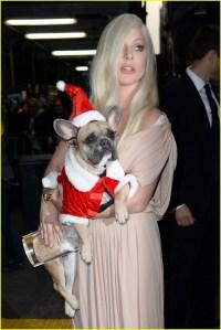 Lady Gaga Dresses Her Dog in a Santa Costume!: Photo ...