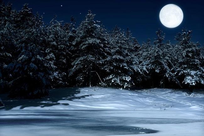 Katekyo Hitman Reborn Hd Wallpaper Как нарисовать зимний лес ночью карандашом или красками