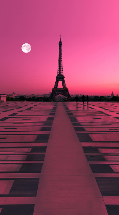 Under The Sea Wallpaper Hd Rose Colored Paris Backdrop Photo Pie