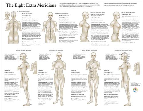 chinese meridian chart - Heartimpulsar