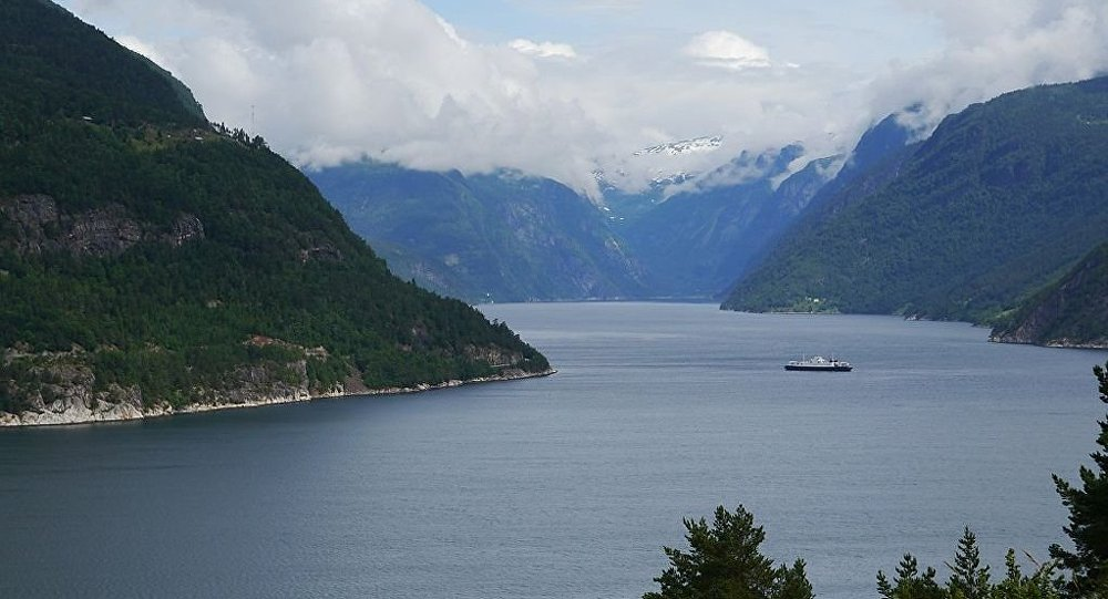 Out of Depth Electricians Stumble Upon Ship Graveyard in Norwegian - fjord