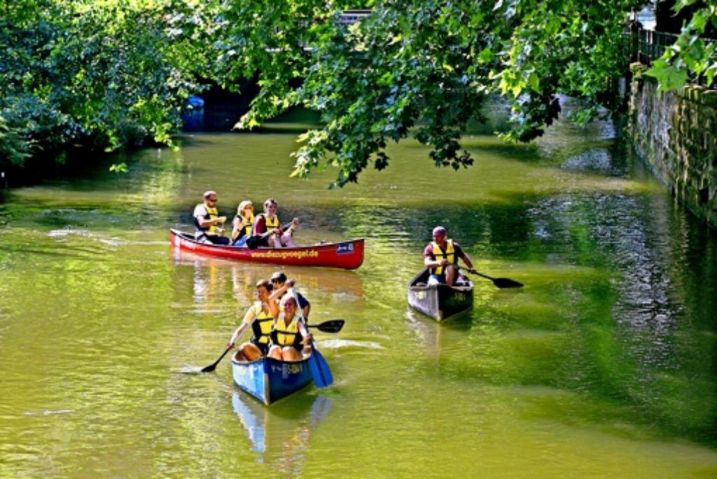 Esslingen Vier Mann In Einem Boot Erleben Die Stadt