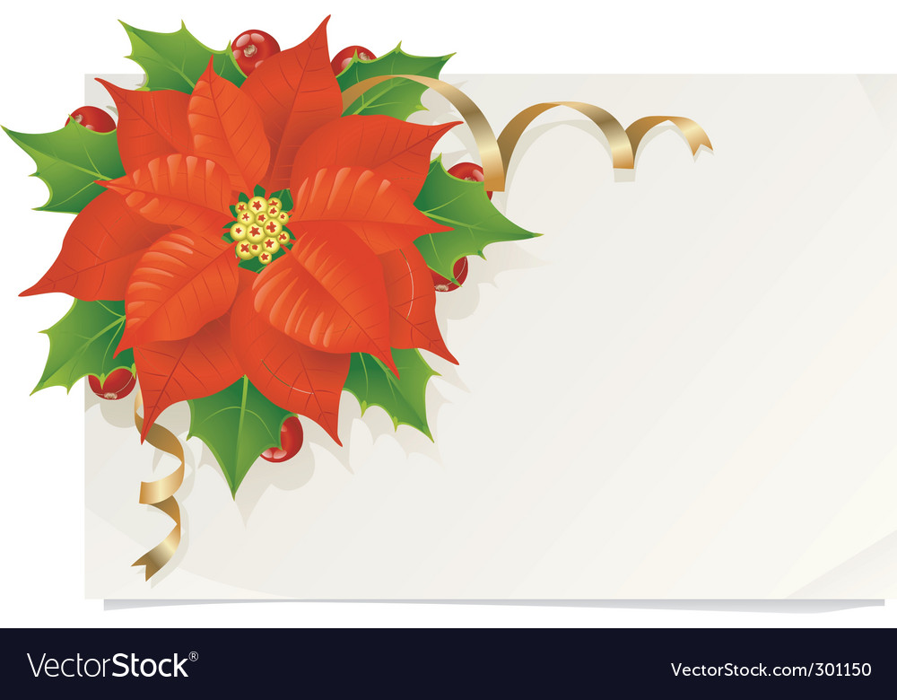 Christmas card with poinsettia Royalty Free Vector Image