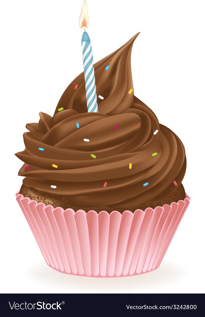 Chocolate Birthday Cupcake Royalty Free Vector Image