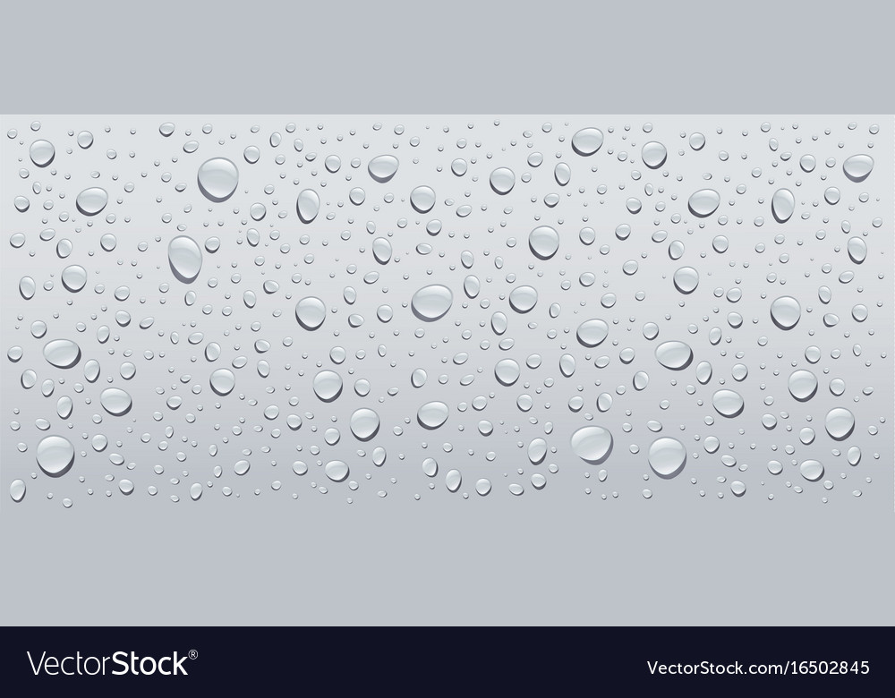 Gray water droplets background Royalty Free Vector Image - water droplets background