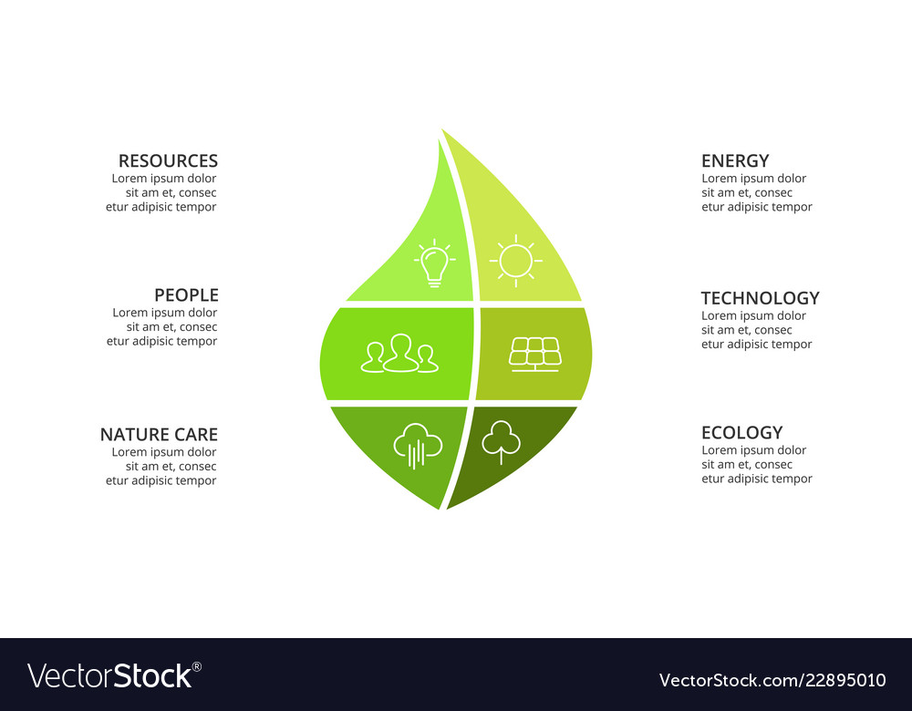 Infographic template green leaf Royalty Free Vector Image
